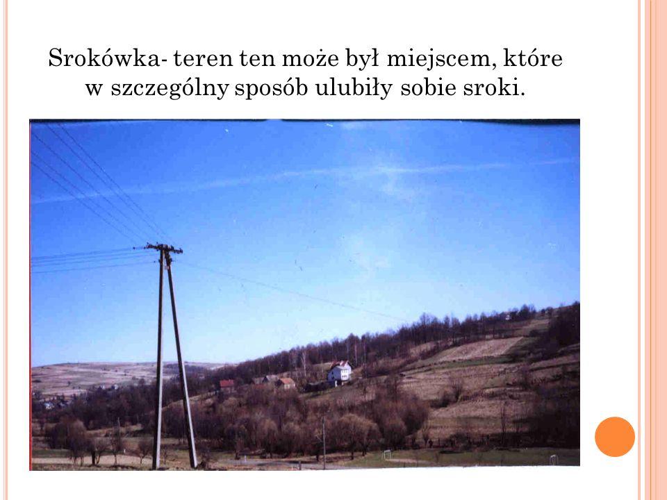 Srokówka- teren ten może był miejscem, które w szczególny sposób ulubiły sobie sroki.