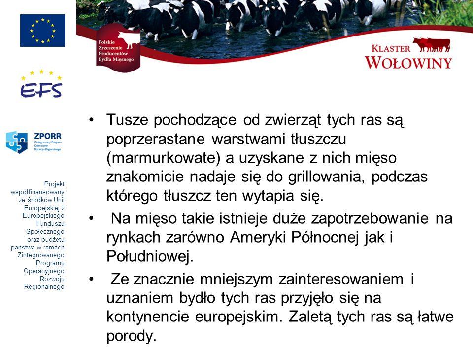 Projekt współfinansowany ze środków Unii Europejskiej z Europejskiego Funduszu Społecznego oraz budżetu państwa w ramach Zintegrowanego Programu Operacyjnego Rozwoju Regionalnego Tusze pochodzące od zwierząt tych ras są poprzerastane warstwami tłuszczu (marmurkowate) a uzyskane z nich mięso znakomicie nadaje się do grillowania, podczas którego tłuszcz ten wytapia się.