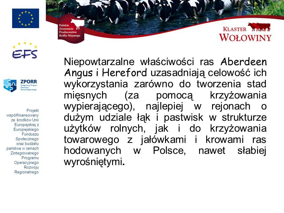 Projekt współfinansowany ze środków Unii Europejskiej z Europejskiego Funduszu Społecznego oraz budżetu państwa w ramach Zintegrowanego Programu Operacyjnego Rozwoju Regionalnego Niepowtarzalne właściwości ras Aberdeen Angus i Hereford uzasadniają celowość ich wykorzystania zarówno do tworzenia stad mięsnych (za pomocą krzyżowania wypierającego), najlepiej w rejonach o dużym udziale łąk i pastwisk w strukturze użytków rolnych, jak i do krzyżowania towarowego z jałówkami i krowami ras hodowanych w Polsce, nawet słabiej wyrośniętymi.