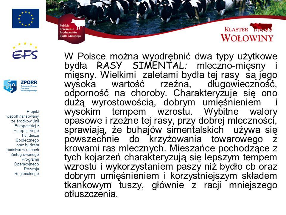 Projekt współfinansowany ze środków Unii Europejskiej z Europejskiego Funduszu Społecznego oraz budżetu państwa w ramach Zintegrowanego Programu Operacyjnego Rozwoju Regionalnego W Polsce można wyodrębnić dwa typy użytkowe bydła RASY SIMENTAL : mleczno-mięsny i mięsny.