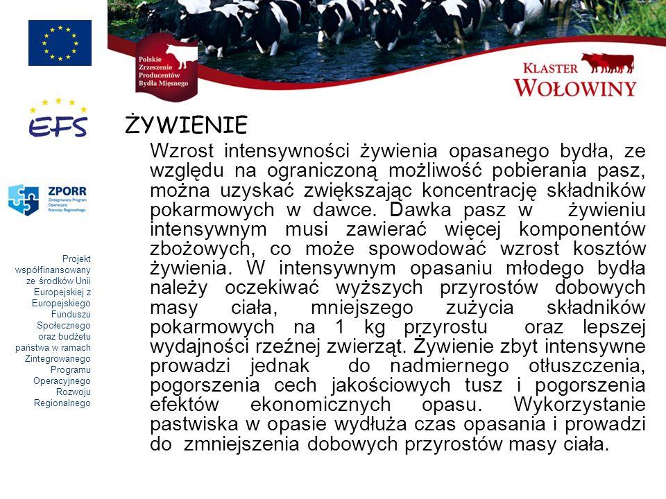 Projekt współfinansowany ze środków Unii Europejskiej z Europejskiego Funduszu Społecznego oraz budżetu państwa w ramach Zintegrowanego Programu Operacyjnego Rozwoju Regionalnego ŻYWIENIE Wzrost intensywności żywienia opasanego bydła, ze względu na ograniczoną możliwość pobierania pasz, można uzyskać zwiększając koncentrację składników pokarmowych w dawce.