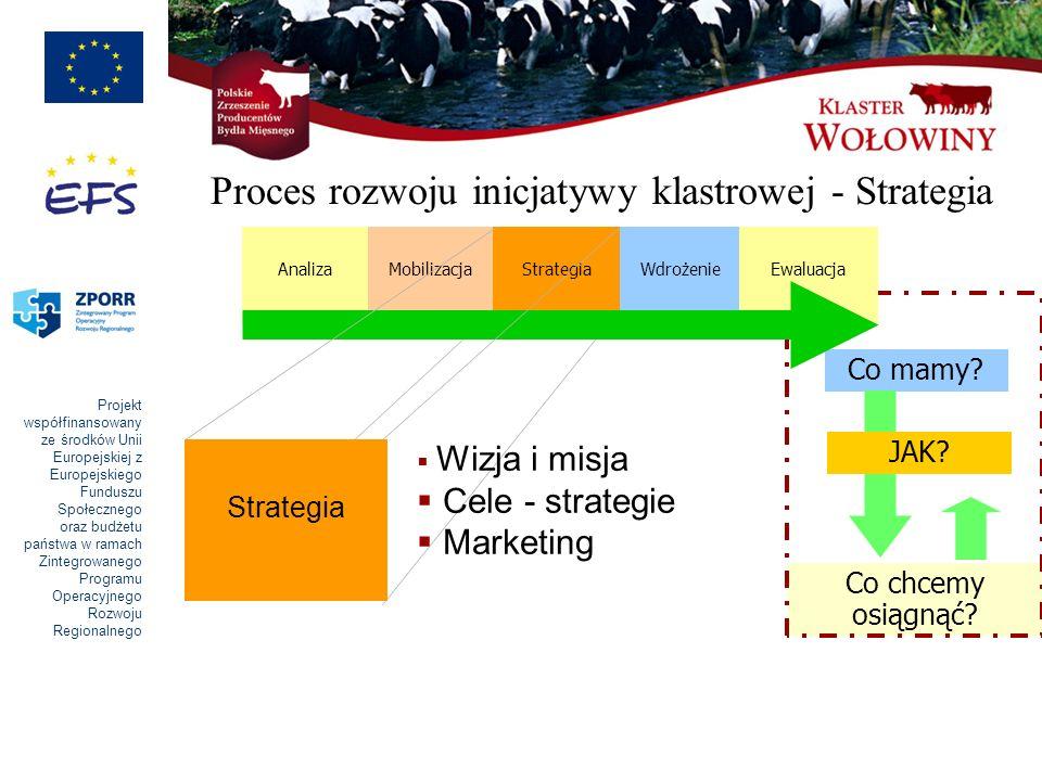 Projekt współfinansowany ze środków Unii Europejskiej z Europejskiego Funduszu Społecznego oraz budżetu państwa w ramach Zintegrowanego Programu Operacyjnego Rozwoju Regionalnego Proces rozwoju inicjatywy klastrowej - Strategia Strategia Wizja i misja Cele - strategie Marketing Co mamy.