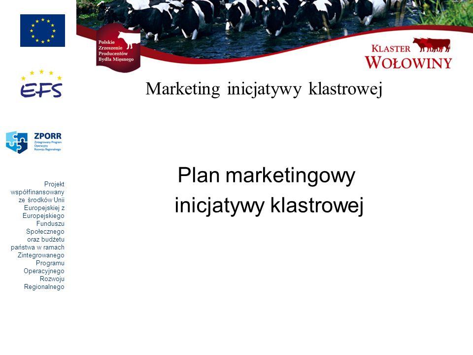 Projekt współfinansowany ze środków Unii Europejskiej z Europejskiego Funduszu Społecznego oraz budżetu państwa w ramach Zintegrowanego Programu Operacyjnego Rozwoju Regionalnego Marketing inicjatywy klastrowej Plan marketingowy inicjatywy klastrowej