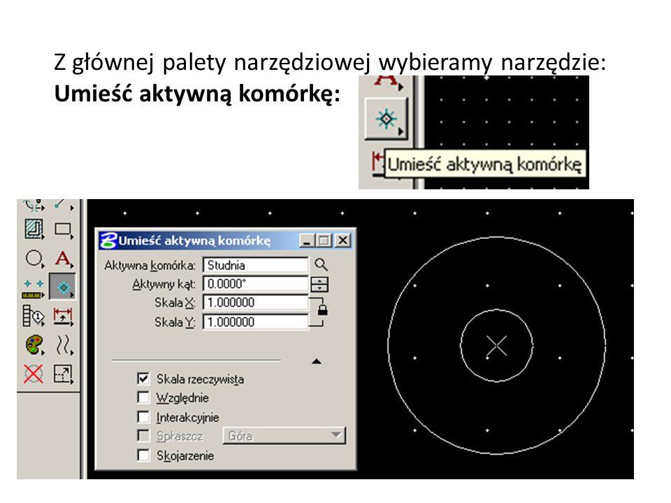 Z głównej palety narzędziowej wybieramy narzędzie: Umieść aktywną komórkę: