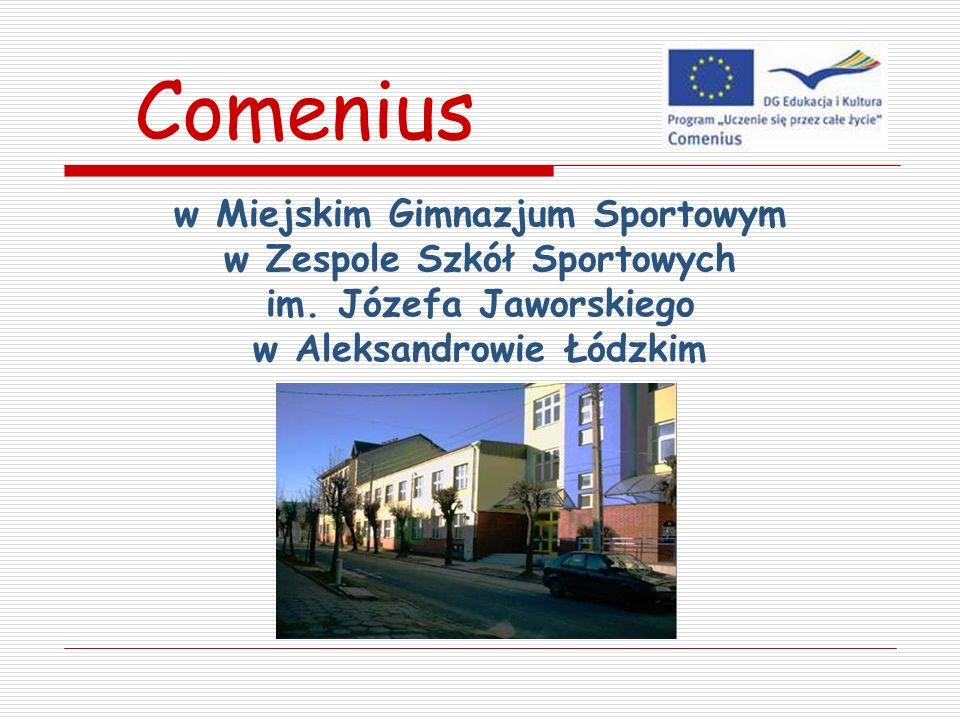 w Miejskim Gimnazjum Sportowym w Zespole Szkół Sportowych im. Józefa Jaworskiego w Aleksandrowie Łódzkim Comenius