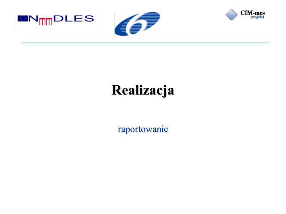 Realizacja raportowanie