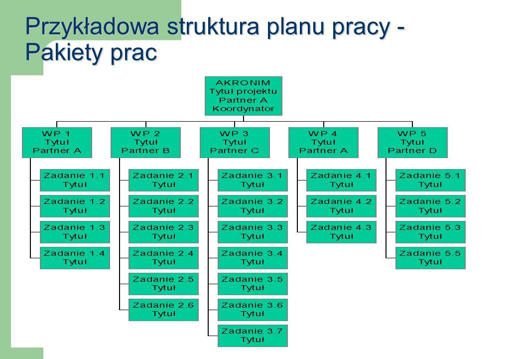 Przykładowa struktura planu pracy - Pakiety prac