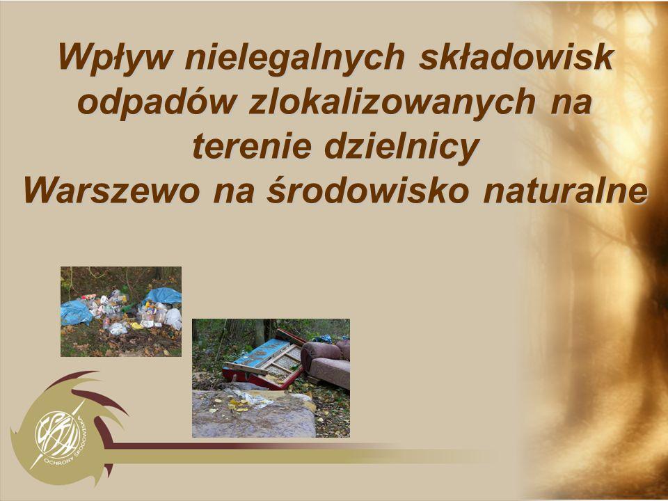 Wpływ nielegalnych składowisk odpadów zlokalizowanych na terenie dzielnicy Warszewo na środowisko naturalne