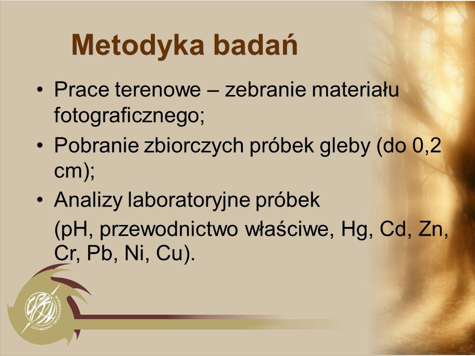 Metodyka badań Prace terenowe – zebranie materiału fotograficznego; Pobranie zbiorczych próbek gleby (do 0,2 cm); Analizy laboratoryjne próbek (pH, pr