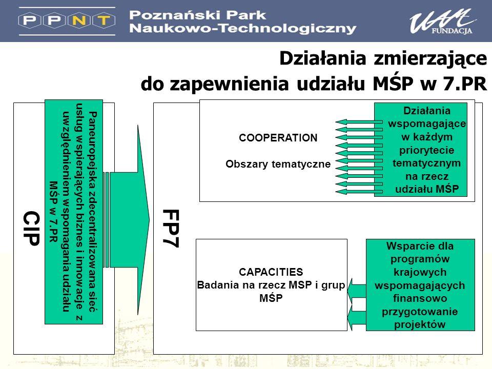 FP7 CIP Działania zmierzające do zapewnienia udziału MŚP w 7.PR Paneuropejska zdecentralizowana sieć usług wspierających biznes i innowacje z uwzględn