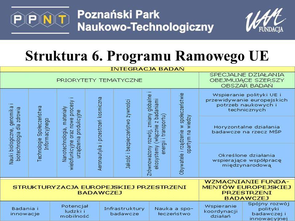 Struktura 6. Programu Ramowego UE