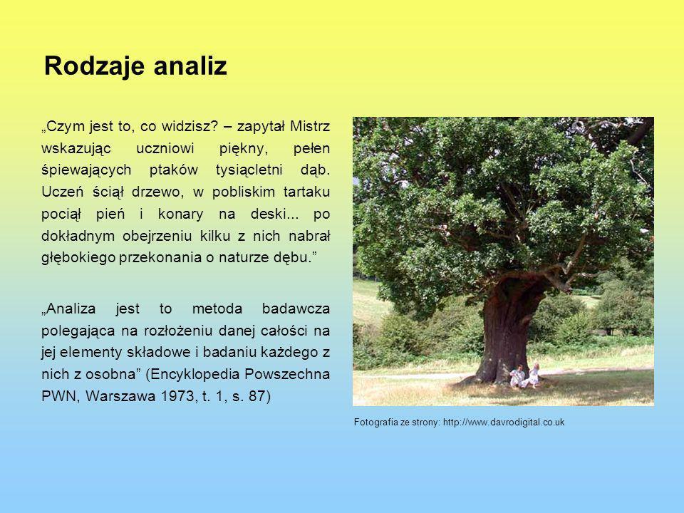Rodzaje analiz Czym jest to, co widzisz? – zapytał Mistrz wskazując uczniowi piękny, pełen śpiewających ptaków tysiącletni dąb. Uczeń ściął drzewo, w