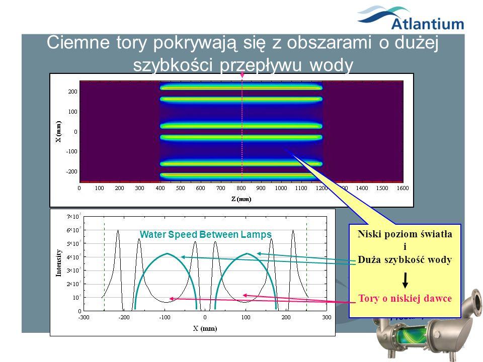 Prosta i potężna Niski poziom światła i Duża szybkość wody Tory o niskiej dawce Ciemne tory pokrywają się z obszarami o dużej szybkości przepływu wody