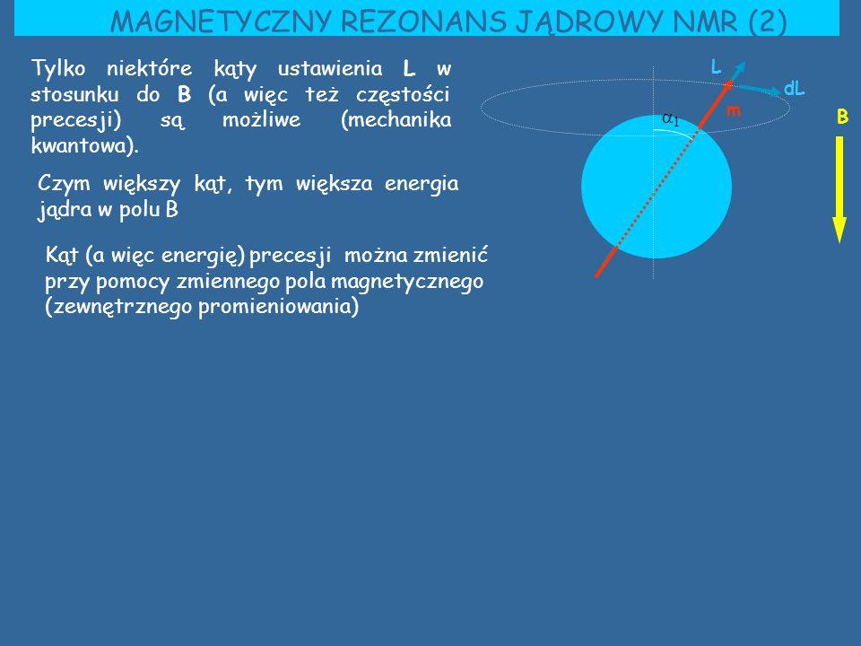 MAGNETYCZNY REZONANS JĄDROWY NMR (2) B Tylko niektóre kąty ustawienia L w stosunku do B (a więc też częstości precesji) są możliwe (mechanika kwantowa