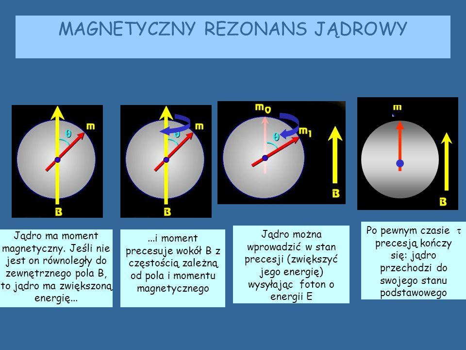 MAGNETYCZNY REZONANS JĄDROWY Jądro ma moment magnetyczny. Jeśli nie jest on równoległy do zewnętrznego pola B, to jądro ma zwiększoną energię......i m