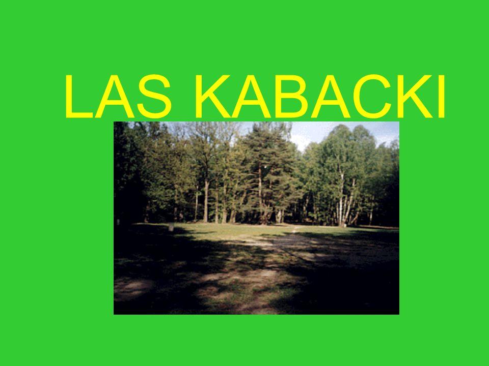LAS KABACKI