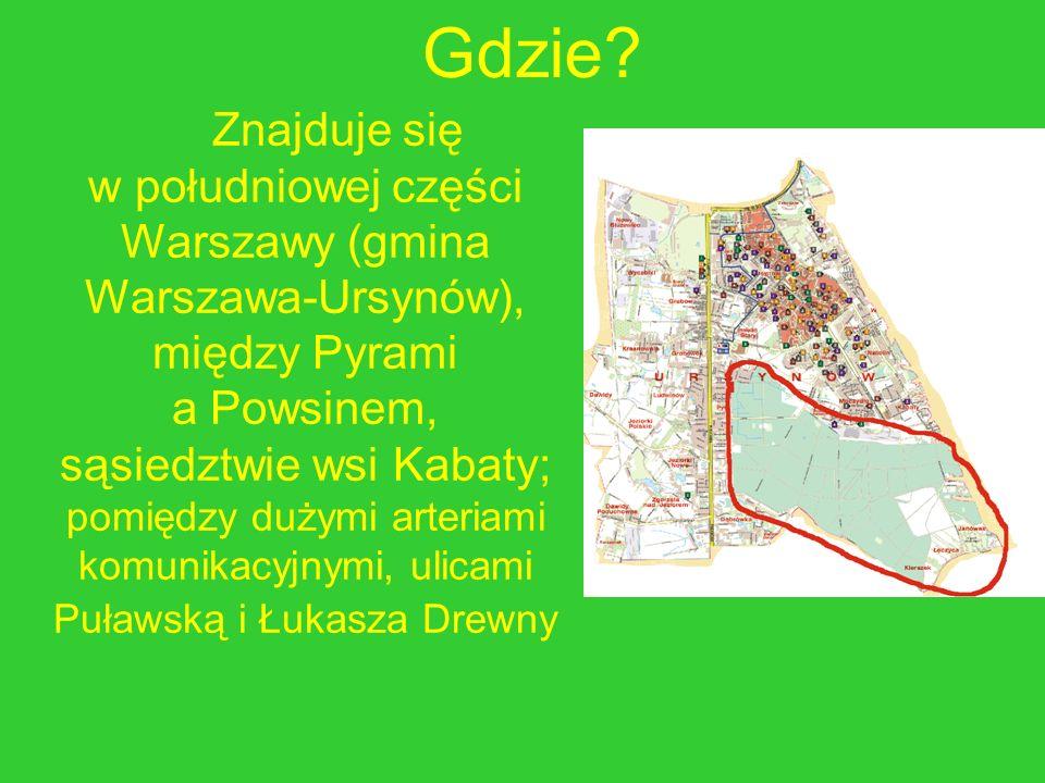 Gdzie? Znajduje się w południowej części Warszawy (gmina Warszawa-Ursynów), między Pyrami a Powsinem, sąsiedztwie wsi Kabaty; pomiędzy dużymi arteriam