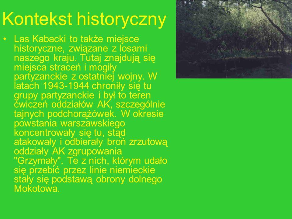 Kontekst historyczny Las Kabacki to także miejsce historyczne, związane z losami naszego kraju. Tutaj znajdują się miejsca straceń i mogiły partyzanck