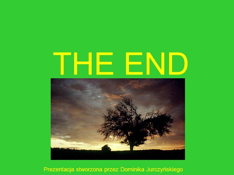 THE END Prezentacja stworzona przez Dominika Jurczyńskiego