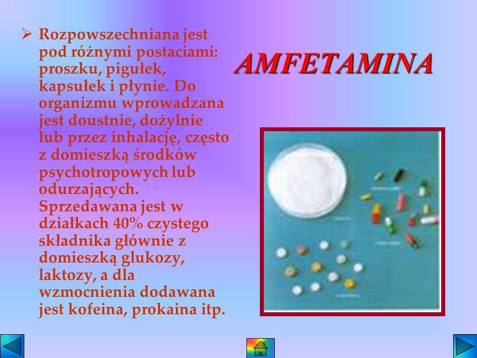DZIAŁANIE KOKAINY Kokaina zawiera alkaloid, który wprowadzony do organizmu powoduje objawy upojenia ze stanem dobrego samopoczucia, działa silnie pobu