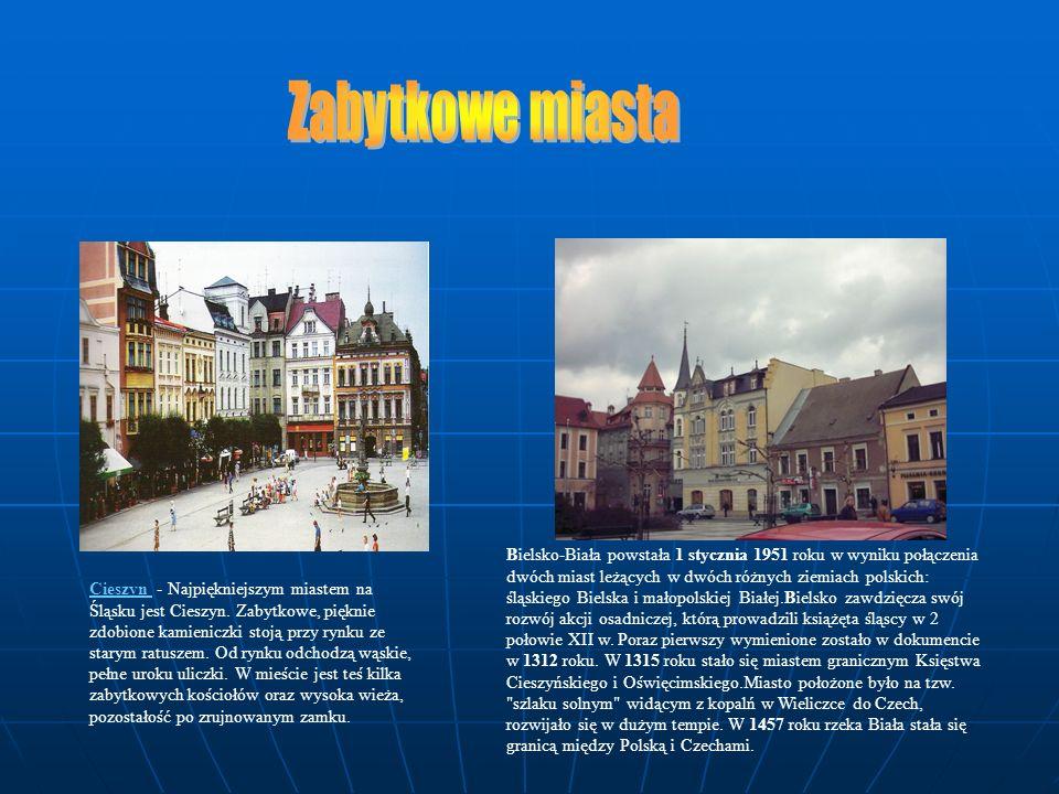Cieszyn - Najpiękniejszym miastem na Śląsku jest Cieszyn. Zabytkowe, pięknie zdobione kamieniczki stoją przy rynku ze starym ratuszem. Od rynku odchod