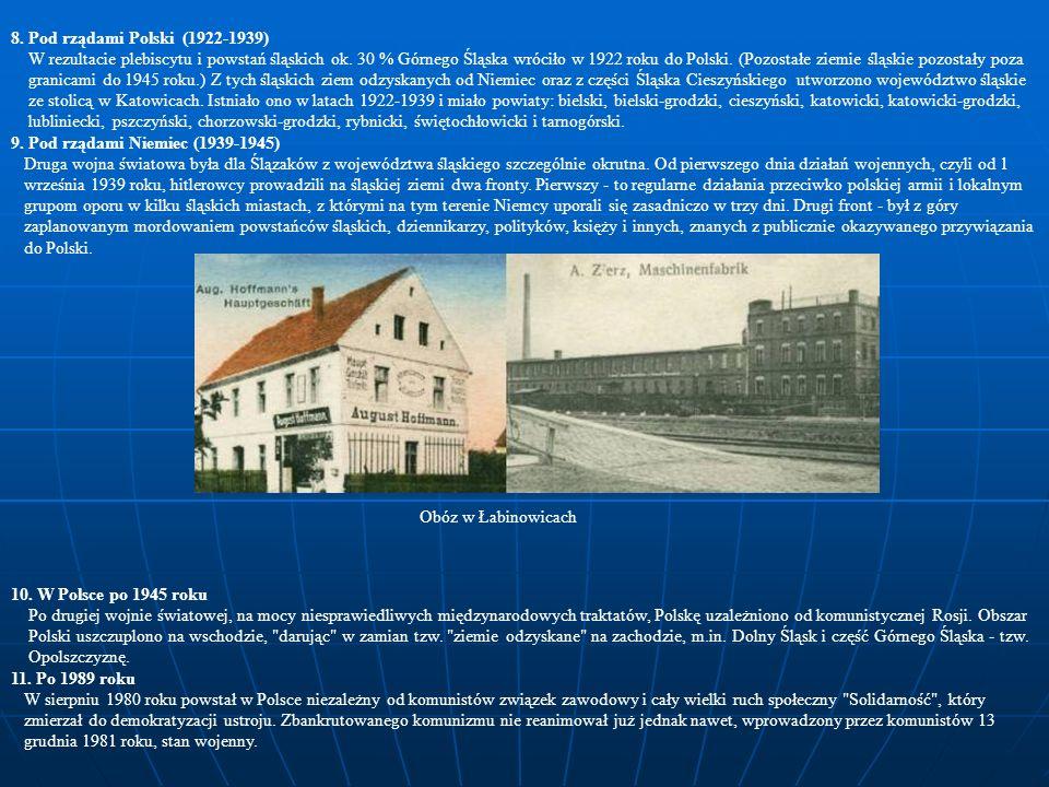 Był nauczycielem i pisarzem, pisał i wydawał polskie podręczniki.