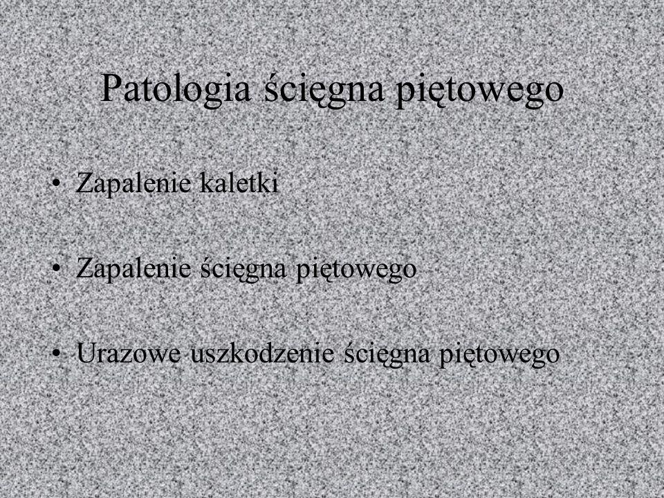 Patologia ścięgna piętowego Zapalenie kaletki Zapalenie ścięgna piętowego Urazowe uszkodzenie ścięgna piętowego