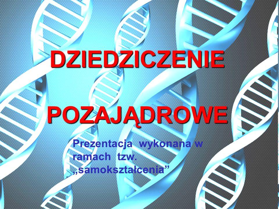 Dziedziczenie cytoplazmatyczne (pozachromosomowe, pozajądrowe) przekazywanie potomstwu genów zlokalizowanych w strukturach znajdujących się poza jądrami komórkowymi.