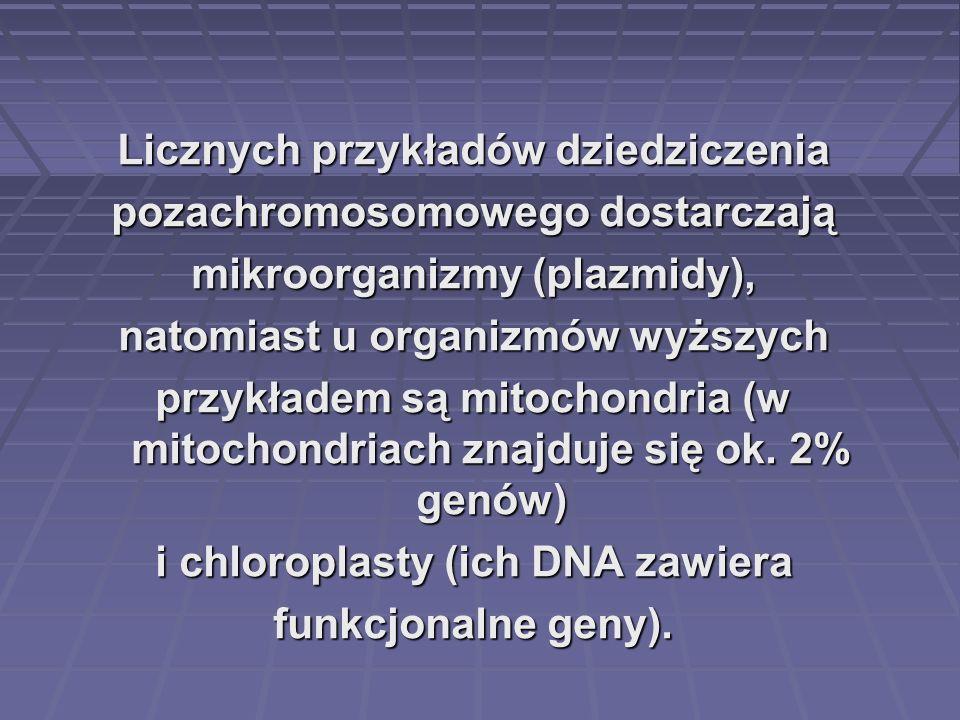 Licznych przykładów dziedziczenia pozachromosomowego dostarczają mikroorganizmy (plazmidy), natomiast u organizmów wyższych przykładem są mitochondria