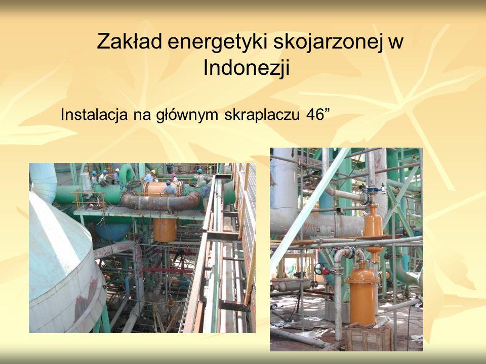 Zakład energetyki skojarzonej w Indonezji Instalacja na głównym skraplaczu 46