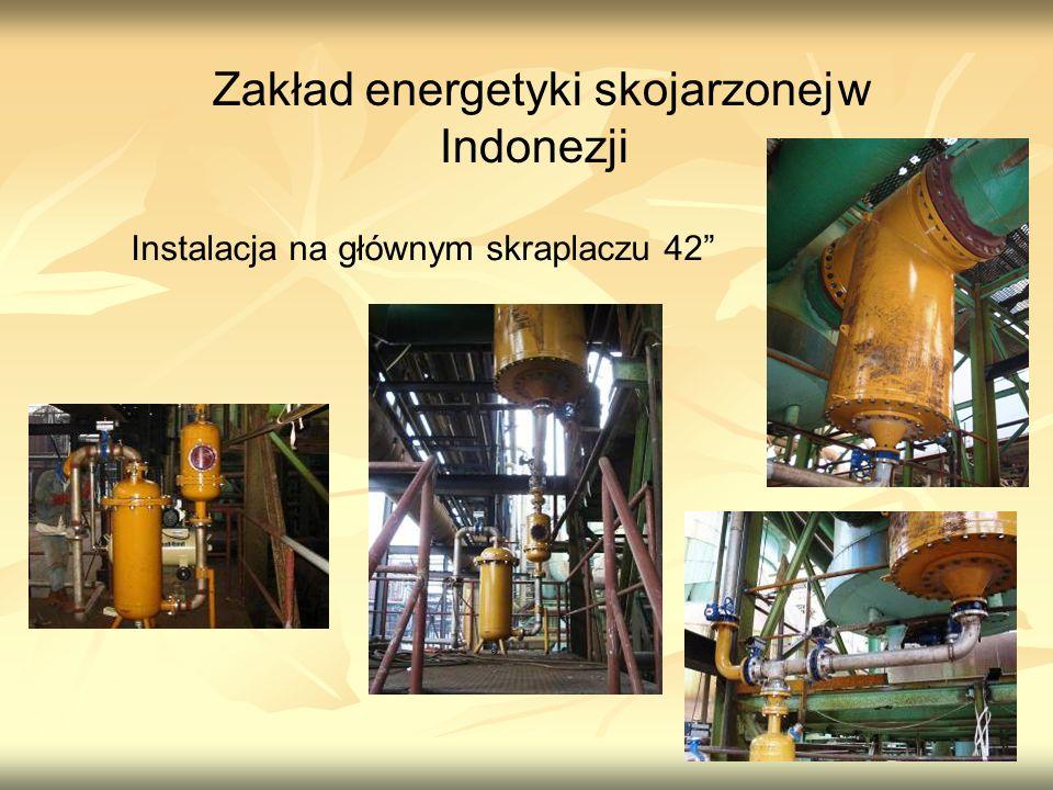 Zakład energetyki skojarzonej w Indonezji Instalacja na głównym skraplaczu 42