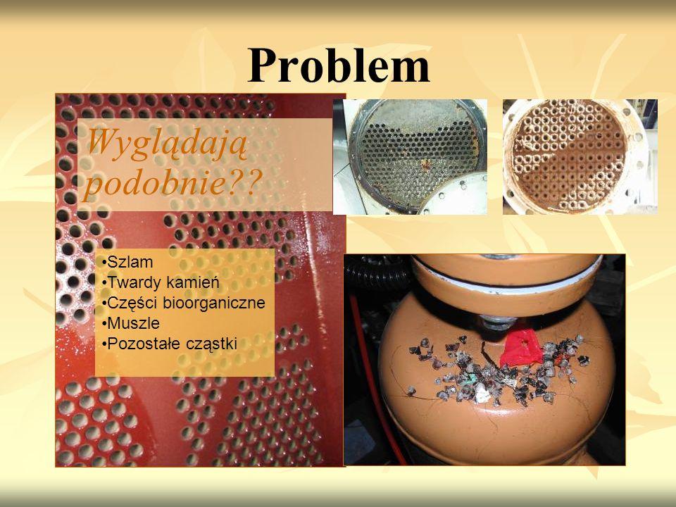 Problem Wyglądają podobnie?? Szlam Twardy kamień Części bioorganiczne Muszle Pozostałe cząstki