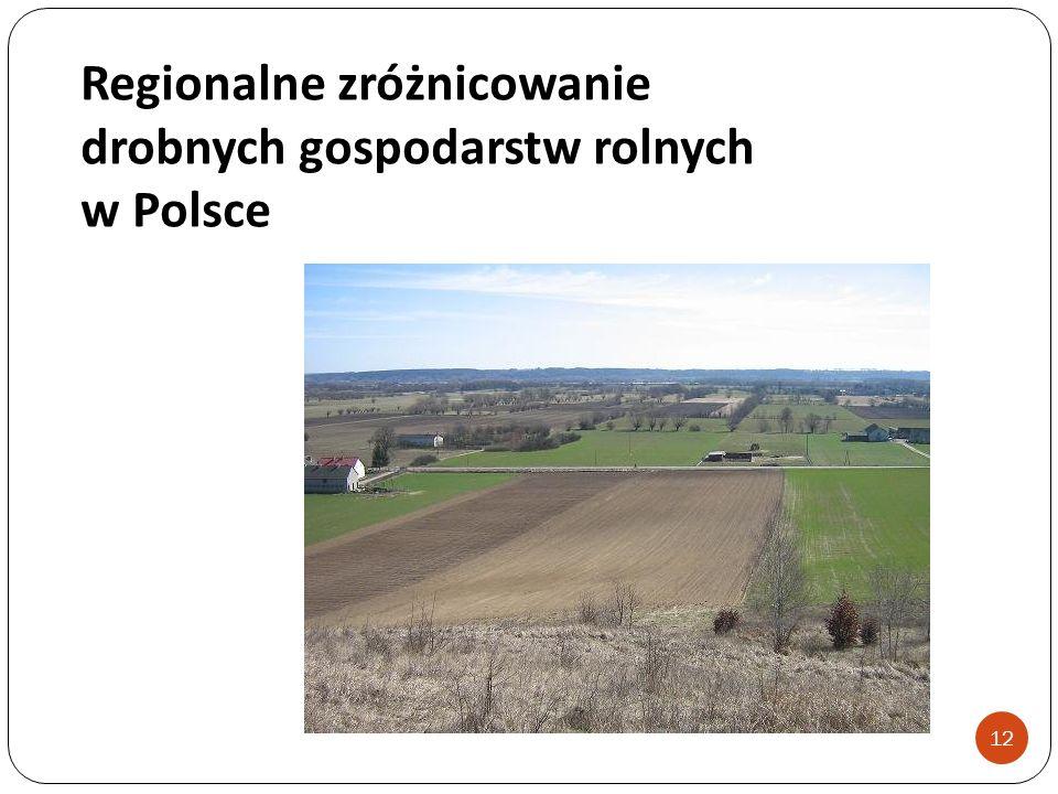 Regionalne zróżnicowanie drobnych gospodarstw rolnych w Polsce 12
