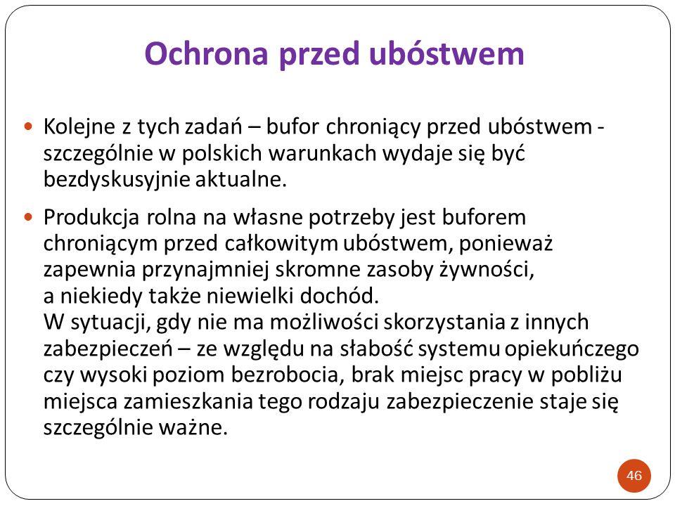 Kolejne z tych zadań – bufor chroniący przed ubóstwem - szczególnie w polskich warunkach wydaje się być bezdyskusyjnie aktualne. Produkcja rolna na wł