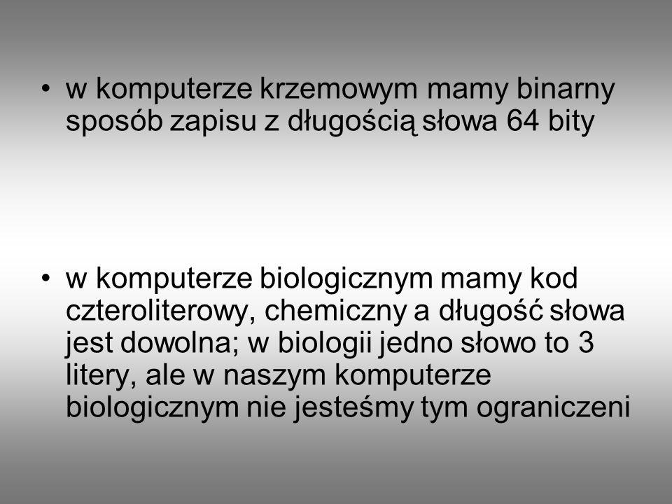 w komputerze krzemowym mamy binarny sposób zapisu z długością słowa 64 bity w komputerze biologicznym mamy kod czteroliterowy, chemiczny a długość sło