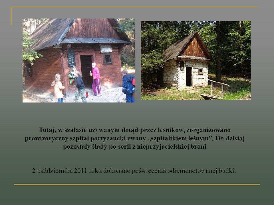 Tutaj, w szałasie używanym dotąd przez leśników, zorganizowano prowizoryczny szpital partyzancki zwany szpitalikiem leśnym. Do dzisiaj pozostały ślady