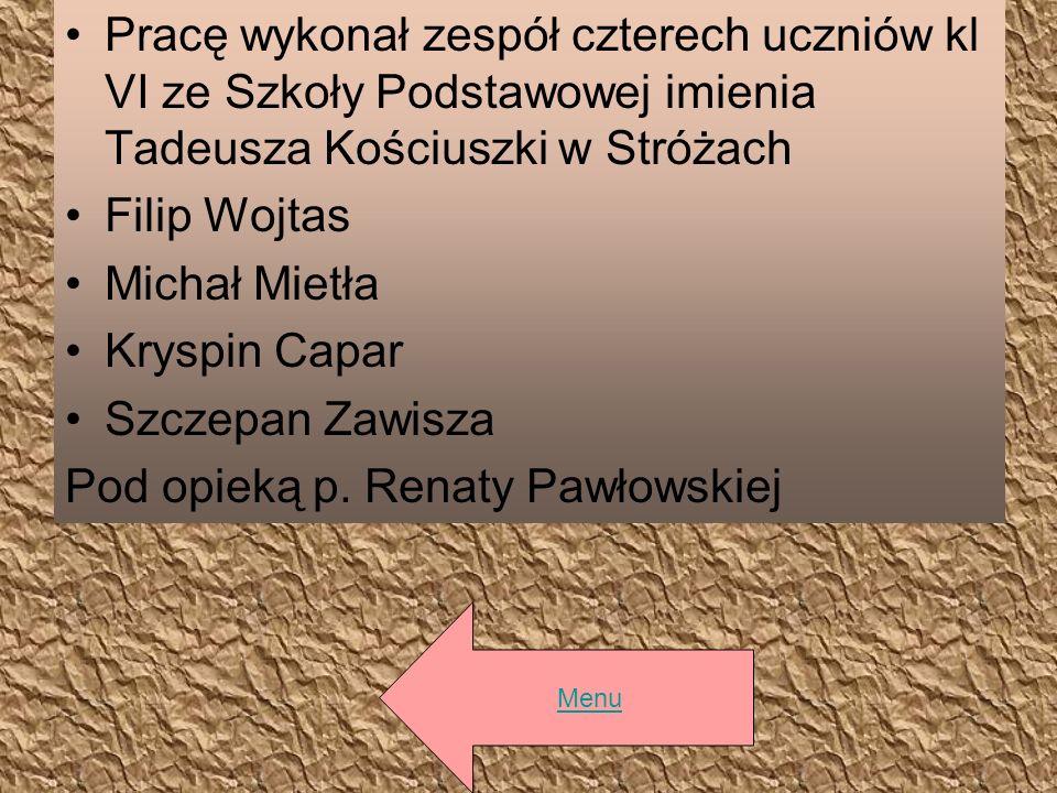 Pracę wykonał zespół czterech uczniów kl VI ze Szkoły Podstawowej imienia Tadeusza Kościuszki w Stróżach Filip Wojtas Michał Mietła Kryspin Capar Szcz