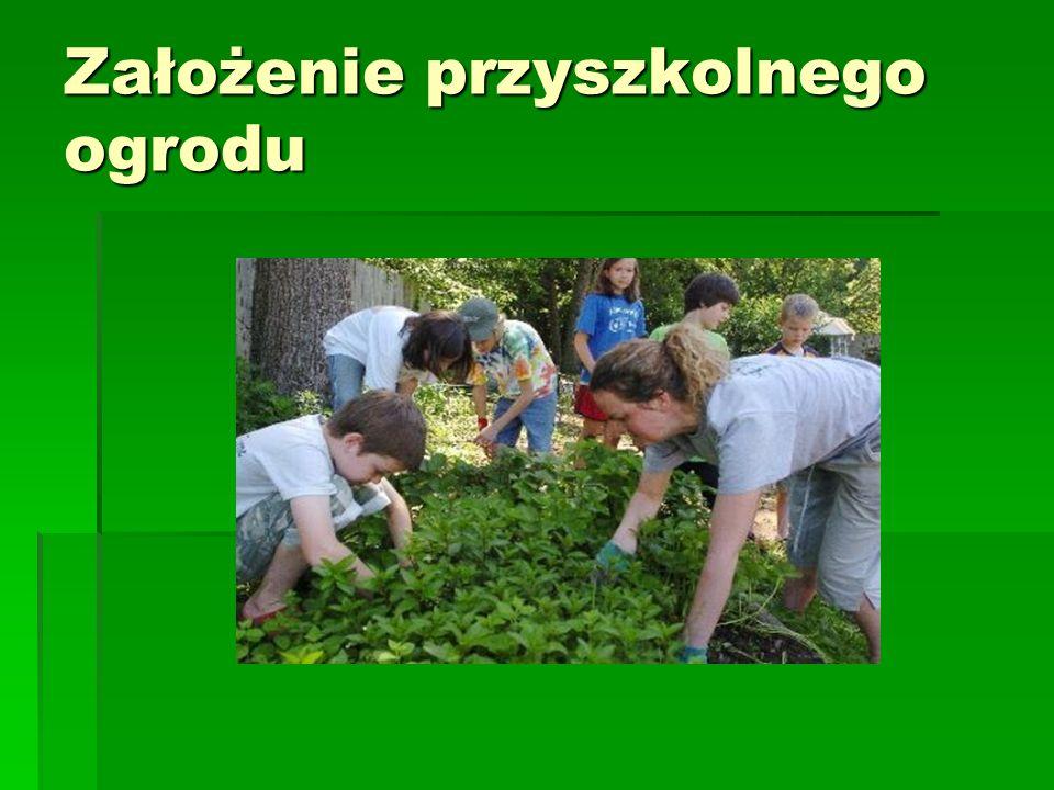 Założenie przyszkolnego ogrodu