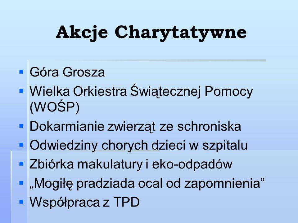 Akcje Charytatywne Góra Grosza Wielka Orkiestra Świątecznej Pomocy (WOŚP) Dokarmianie zwierząt ze schroniska Odwiedziny chorych dzieci w szpitalu Zbió