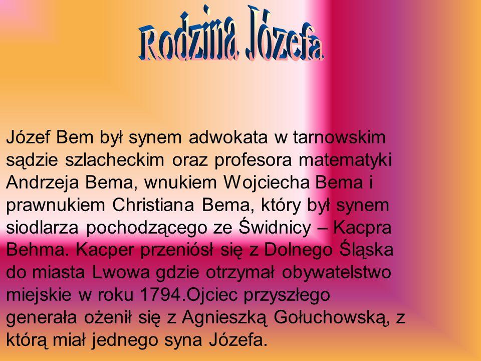 Józef Bem był synem adwokata w tarnowskim sądzie szlacheckim oraz profesora matematyki Andrzeja Bema, wnukiem Wojciecha Bema i prawnukiem Christiana Bema, który był synem siodlarza pochodzącego ze Świdnicy – Kacpra Behma.