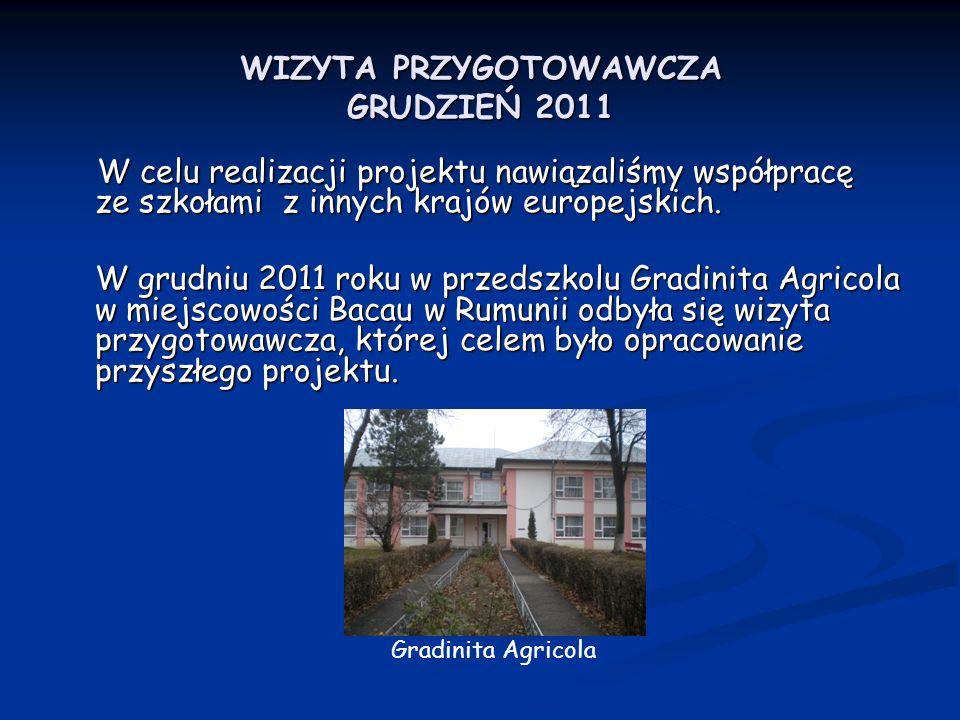 WIZYTA PRZYGOTOWAWCZA GRUDZIEŃ 2011 W celu realizacji projektu nawiązaliśmy współpracę ze szkołami z innych krajów europejskich. W celu realizacji pro
