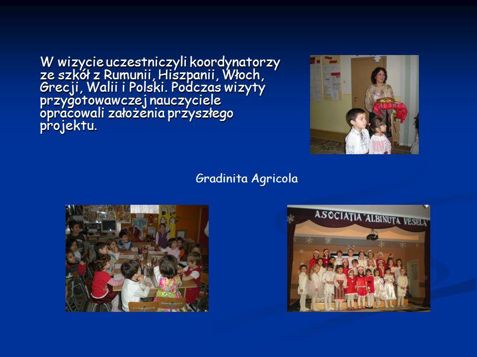 W wizycie uczestniczyli koordynatorzy ze szkół z Rumunii, Hiszpanii, Włoch, Grecji, Walii i Polski. Podczas wizyty przygotowawczej nauczyciele opracow