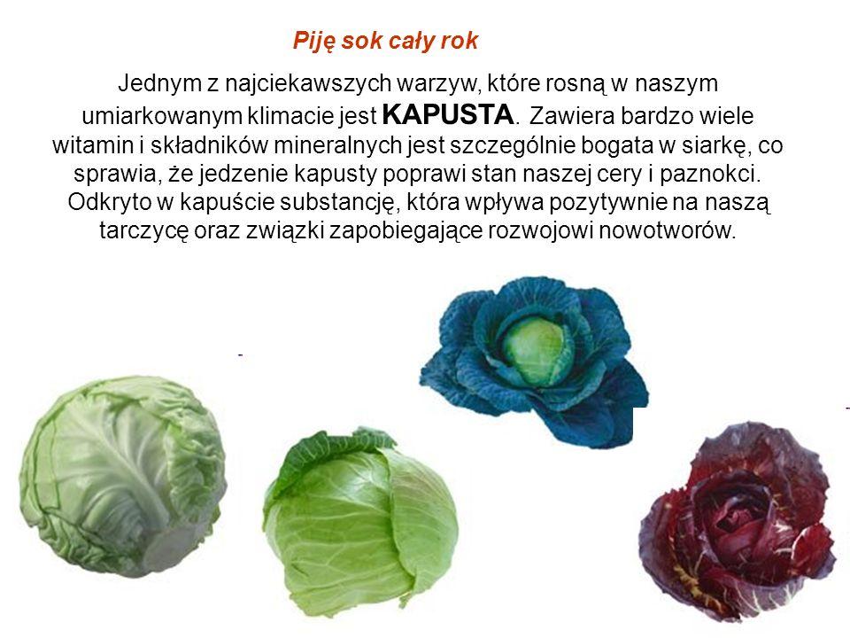 Jednym z najciekawszych warzyw, które rosną w naszym umiarkowanym klimacie jest KAPUSTA. Zawiera bardzo wiele witamin i składników mineralnych jest sz