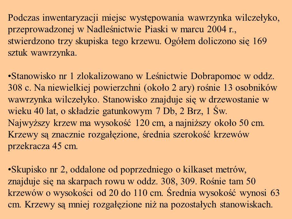 Podczas inwentaryzacji miejsc występowania wawrzynka wilczełyko, przeprowadzonej w Nadleśnictwie Piaski w marcu 2004 r., stwierdzono trzy skupiska tego krzewu.