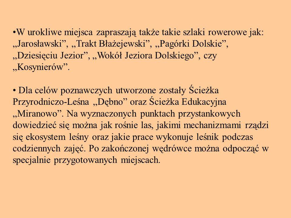 Dla celów poznawczych utworzone zostały Ścieżka Przyrodniczo-Leśna Dębno oraz Ścieżka Edukacyjna Miranowo.