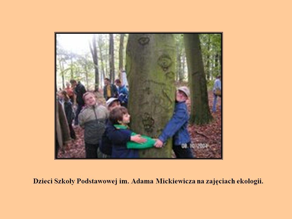 Dzieci Szkoły Podstawowej im. Adama Mickiewicza na zajęciach ekologii.