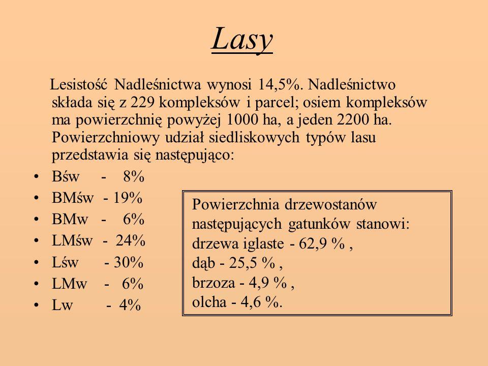 Lasy Lesistość Nadleśnictwa wynosi 14,5%.