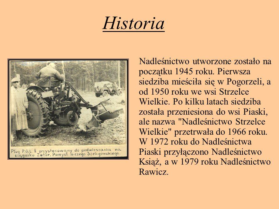 Historia Nadleśnictwo utworzone zostało na początku 1945 roku. Pierwsza siedziba mieściła się w Pogorzeli, a od 1950 roku we wsi Strzelce Wielkie. Po