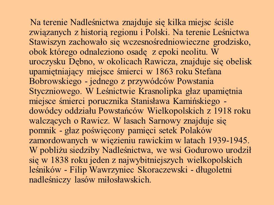 Na terenie Nadleśnictwa znajduje się kilka miejsc ściśle związanych z historią regionu i Polski. Na terenie Leśnictwa Stawiszyn zachowało się wczesnoś