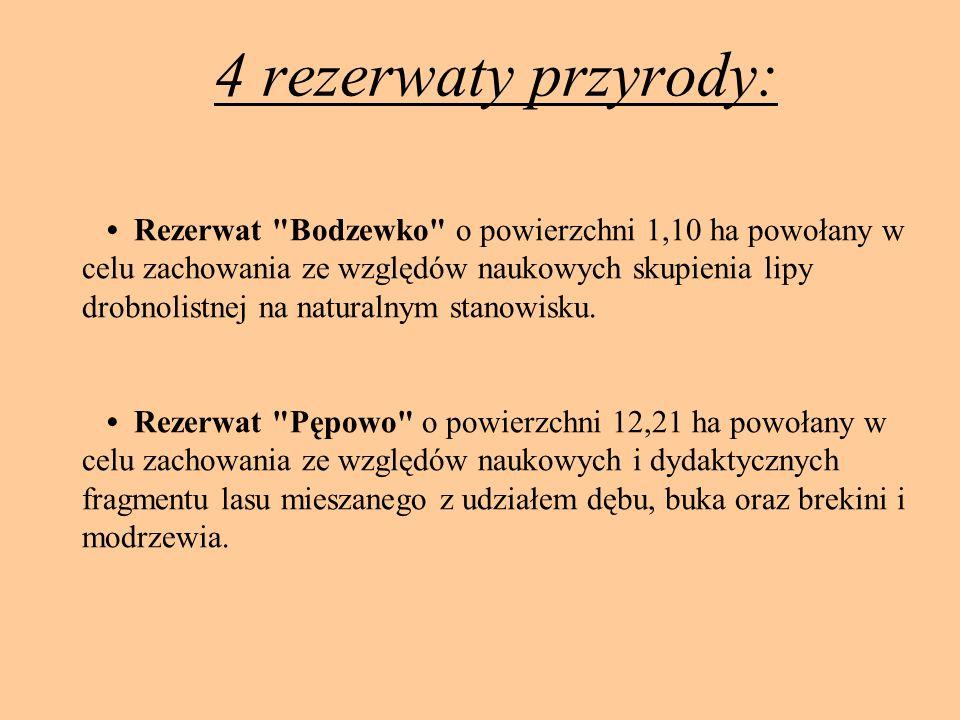 4 rezerwaty przyrody: Rezerwat Bodzewko o powierzchni 1,10 ha powołany w celu zachowania ze względów naukowych skupienia lipy drobnolistnej na naturalnym stanowisku.